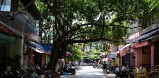 Một con phố Hà Nội.