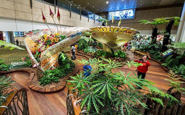 Vườn bách thảo trên sân thượng sân bay