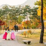 Du lịch Hàn Quốc - Khám phá khí hậu và những điểm đến hấp dẫn