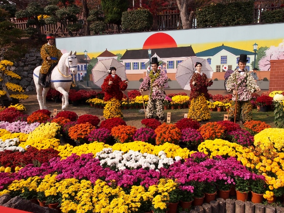 Lễ hội Hoa cúc
