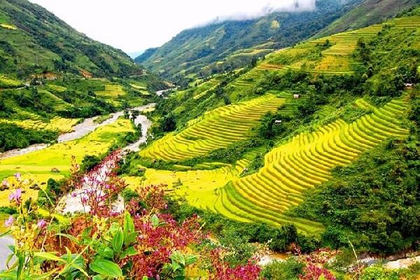 Cảnh đẹp sapa: thung lũng mường hoa